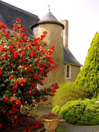 Saint-Brice, France: tour