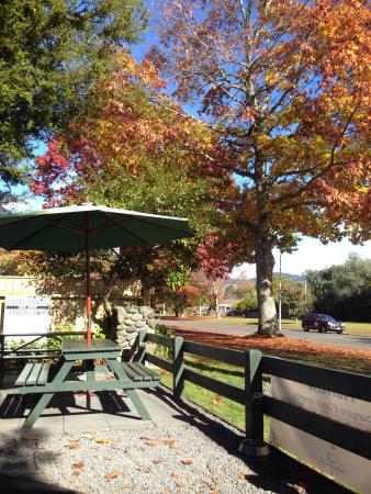 Turangi, Nueva Zelanda: Creel is great for coffee and deserts. I like it because it is close to the River Birches lodge.