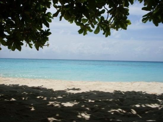 Остров Курамати: Morning view