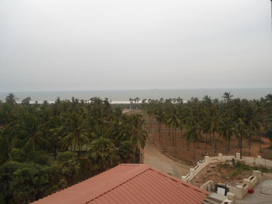 Senora Beach Resort: beach view