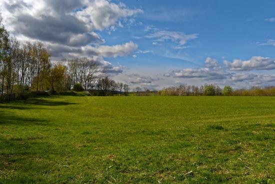 Abergavenny, UK: great dog walking field
