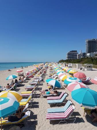 The Confidante Miami Beach 20160507 105228 Large Jpg