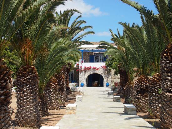 Schinoussa, Grekland: photo0.jpg