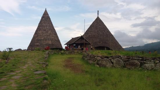 Tado Village