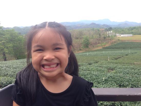 Mae Chan, Tailandia: A relaxing day at Choui Fong Tea Plantation