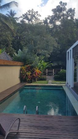 The Samaya Bali Ubud: 20160518_084657_large.jpg