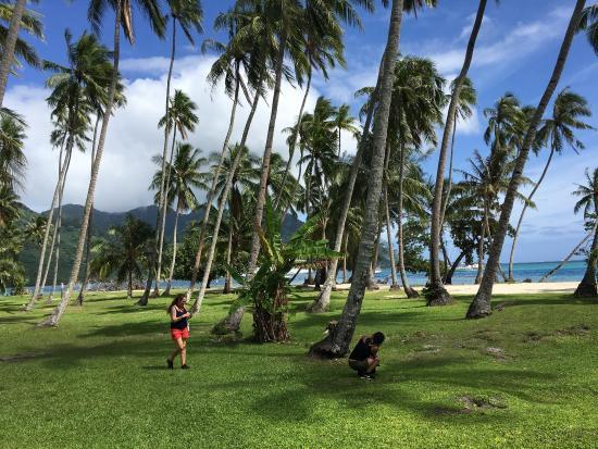 Haapiti, Polinesia Francesa: photo1.jpg