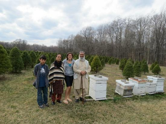 Martinsville, IN: Another picture beside hives