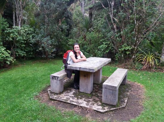 Piha, Новая Зеландия: 20160512_001619_large.jpg