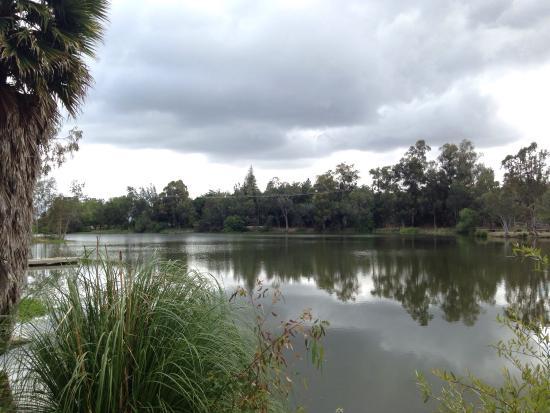 Vasona Lake County Park: photo2.jpg