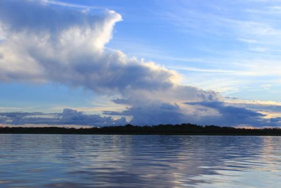 Amazon Experience: pacaya samiria national reserve