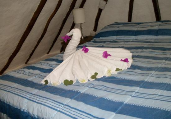 Amar Inn B&B: towel sculptures each day