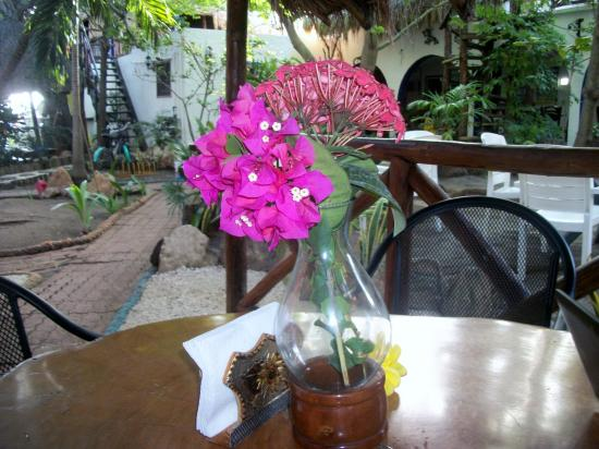 Amar Inn B&B: flowers in the morning