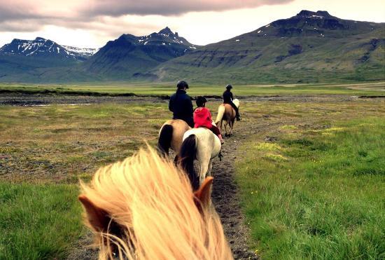 Breiddalsvik, Islandia: Sisters riding together