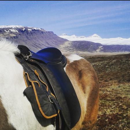 Breiddalsvik, Islandia: Breaktime during a 3 hour tour