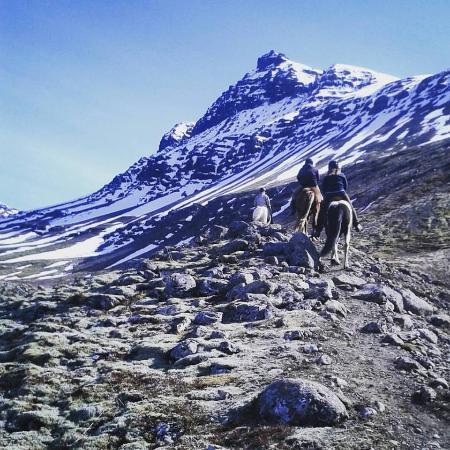 Breiddalsvik, Islandia: To the mountains we ride