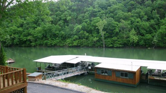 Lilleys' Landing Resort & Marina: Marine
