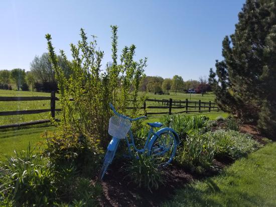 Fields of Home Lodge and Cabins照片