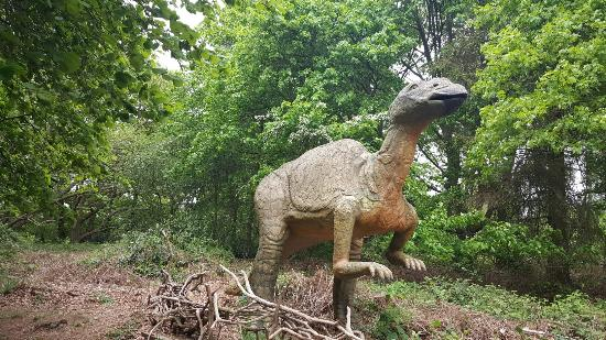 Adventure Play Area Face Painting Lost World Amazing Pterodactyls Treehouse Raptor Races Jurrasic Putt Crazy Golf Dippys Splash Zone