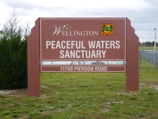Wellington-bild