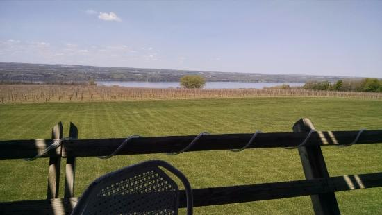 Ginny Lee Cafe: View from Cafe deck with Seneca Lake in the background.