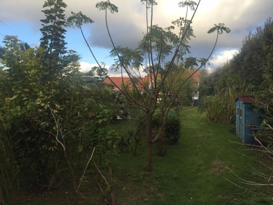 Quinta dos Bravos: vue du jardin