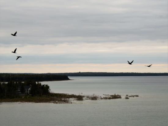 Baileys Harbor, Висконсин: the view!