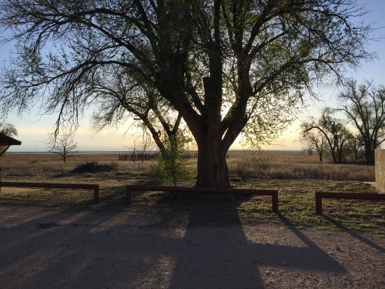 Rita Blanca/Kiowa National Grassland: There are a couple of picnic areas with toilets that allow overnight camping. They're situated a