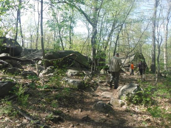 Hillsborough, NJ: Sourland Mountain Preserve