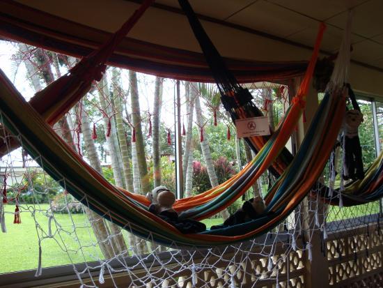 Poas Volcano National Park, Kostaryka: Pura Vida......