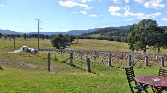 Kilcoy, Australia: The Angus steak meal was cooked to perfection. The venue has great views of the surrounding coun