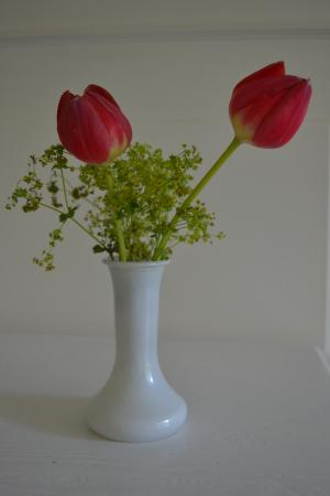 Number 11 Exclusive Guesthouse: Fresh flowers
