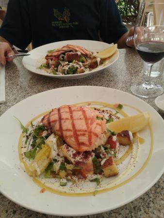 Grilled salmon and fattoush salad