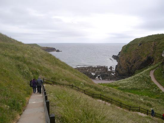 Stonehaven, UK: More of the steps