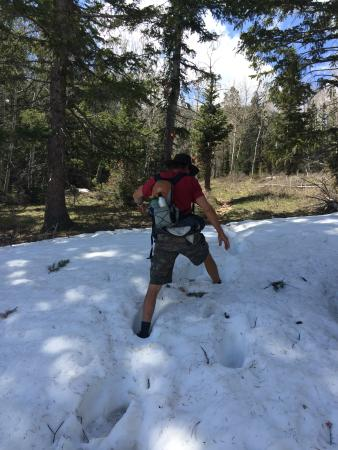 Parque Nacional Great Basin, NV: Hubby trekking through the snow