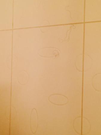 La Marianne : Voici les preuves de mon passage dans l'hôtel le plus horrible que j'ai connu ... Poils dans le