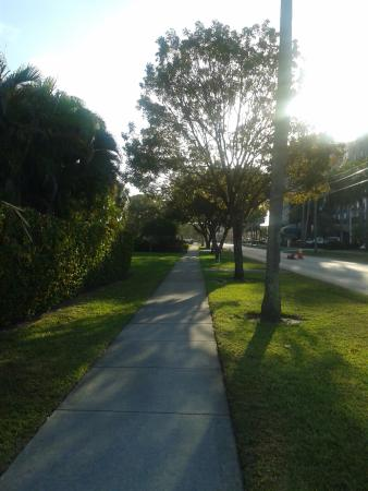 Майами-Спрингс, Флорида: Road opposite the hotel