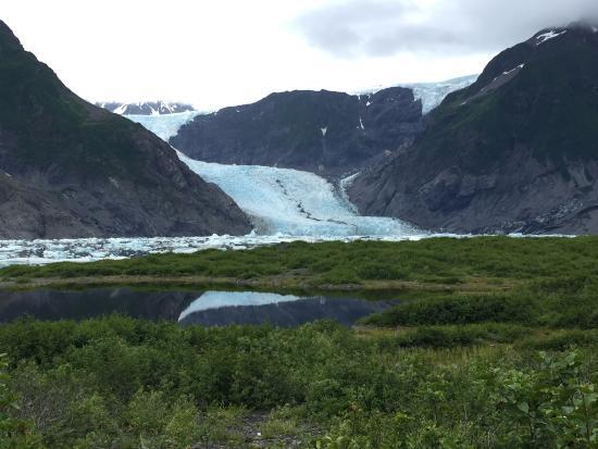 Pederson Glacier : Glimpse of Pederson
