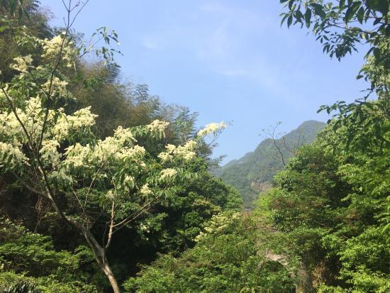 Ningbo Wulong Pond: photo0.jpg