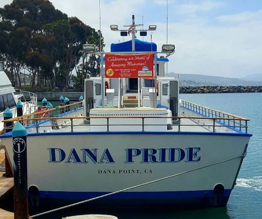 Dana Point, CA: 20160520_130814_large.jpg