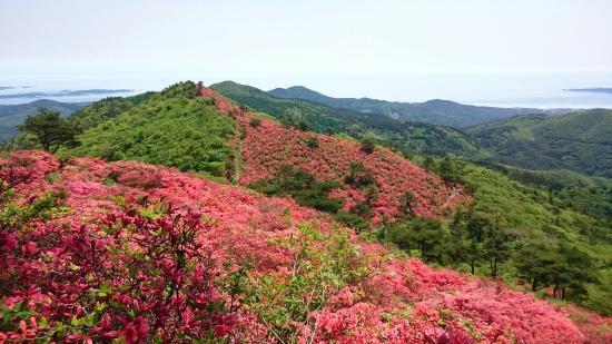 Mt. Tokusenjo
