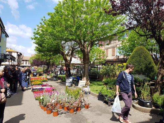Mirepoix, Frankrig: Market day