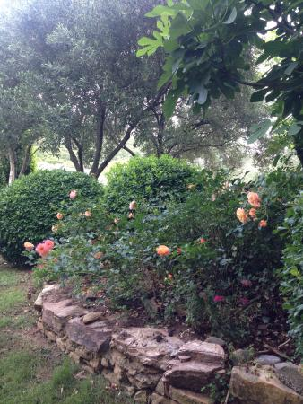 Emel Pension: Beautiful Garden