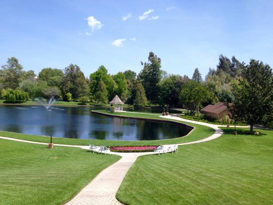Fallbrook, CA: The view from the veranda.