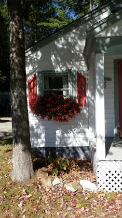 Cottage Place on Squam Lake: Time to enjoy the window boxes