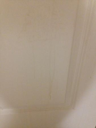 Sandman Hotel & Suites Regina: Back of the bathroom door dripping with grime