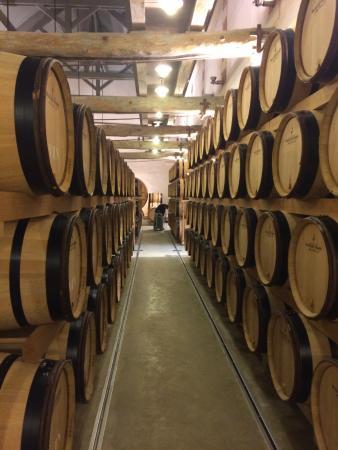 Mareuil-sur-Ay, Francia: Wijnkelder