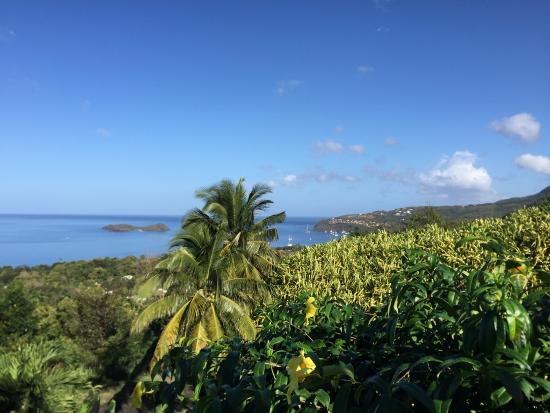 Le jardin tropical hotel bouillante guadeloupe voir for Jardin tropical guadeloupe