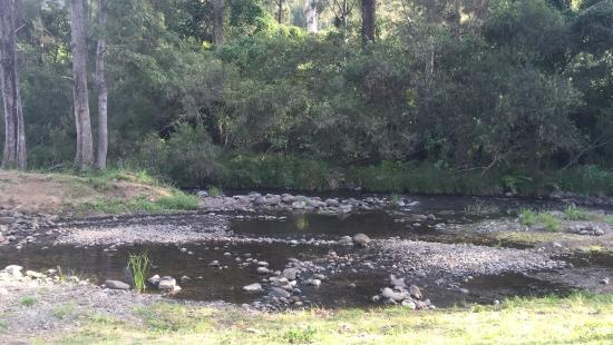 Canungra, Australia: The most Tranquil place to be at....amazing food (compliments to the chef), great atmosphere n s
