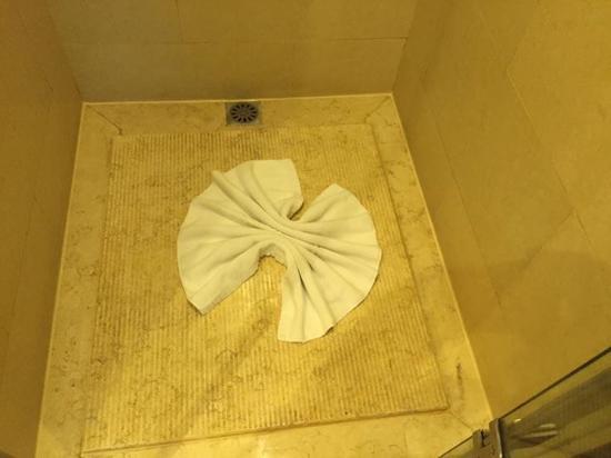 Guangdong Yingbin Hotel (Guest House) : Good shower